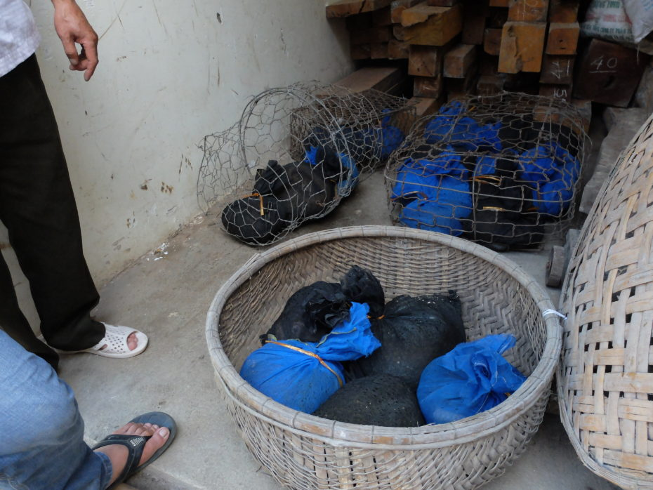 Trafficked pangolins saved from ending up on a dinner plate.